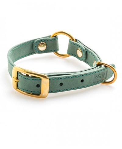 Forester Nobuk leather collar