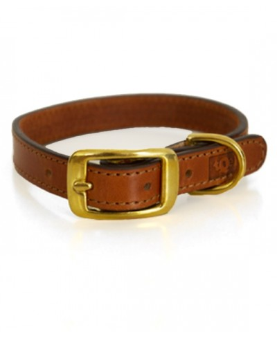 Land natural leather dog collar